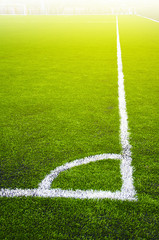 Soccer grass field with marking