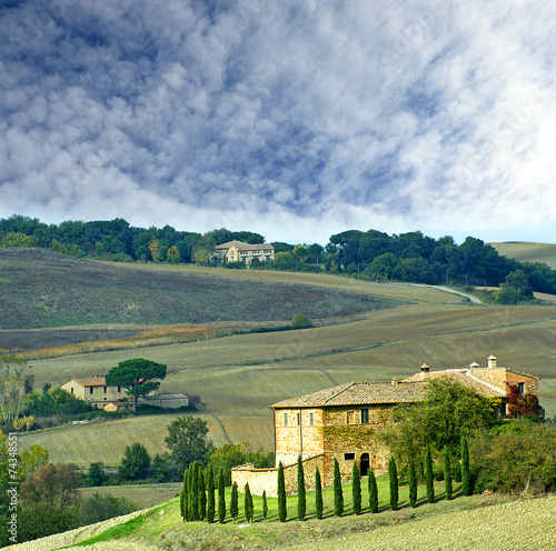 Autumn landscape of the Val d'Orcia. Tuscany, Italy, UNESCO WH - 74348551