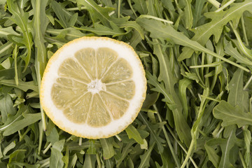 argula salad decorated with slice of lemon