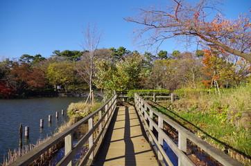洗足池と木道