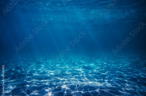 Foto op Aluminium Zee / Oceaan underwater