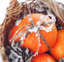 Christmas Oranges with Sticky Snow on Bow, square