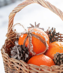 Christmas Tangerines and Pine Cones at the Snow