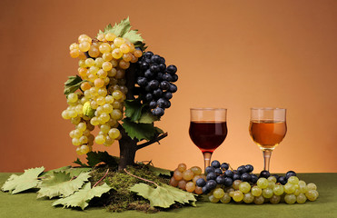 Fresh grapes  and wine in a glass
