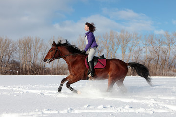Young rider on an German horse galloping in deep snow