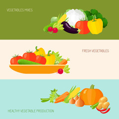 Vegetables Banner Set