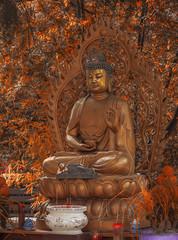 Shakyamuni statue in temple