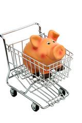 Ein Sparschwein in einem Einkaufswagen