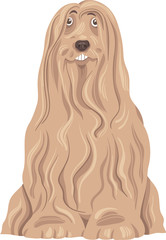 bearded collie dog cartoon