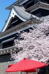 熊本城 花見の風景
