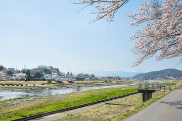 桜と阿武隈川