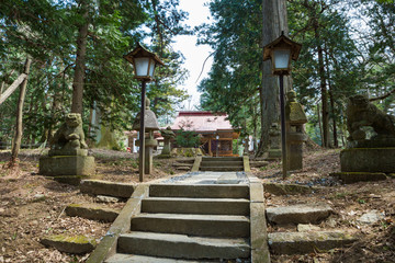 The approach to the Shirakawa shrine