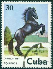 stamp printed in Cuba shows black horse jumping