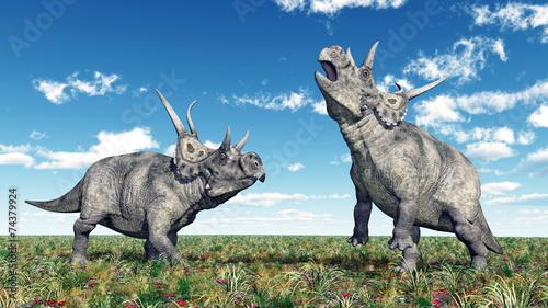 diabloceratops-dinozaurow