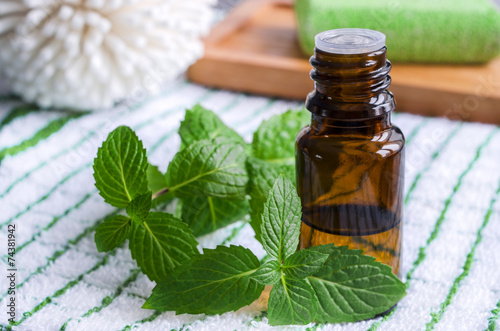 Leinwandbild Motiv Essential mint oil