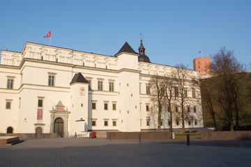 Royal Palace and Gediminas Hill
