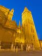 Seville - Cathedral de Santa Maria de la Sede at dusk