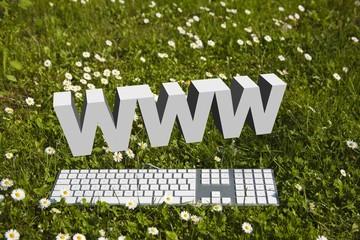 WWW Internet in garden!