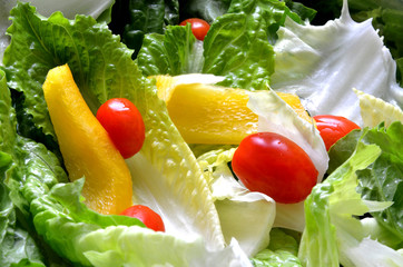 Green fresh salad leaves, tomato and paprika