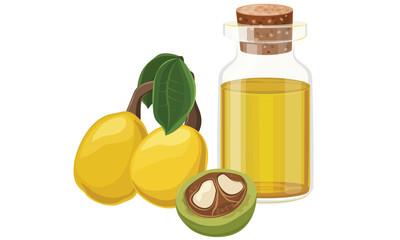 Marula oil, fruit, nut, glass bottle