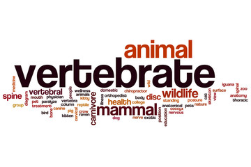 Vertebrate word cloud