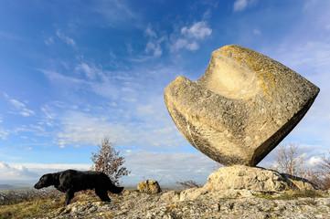 Würfelskulptur aus Stein mit Hund
