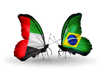 Two butterflies with flags UAE and Brazil