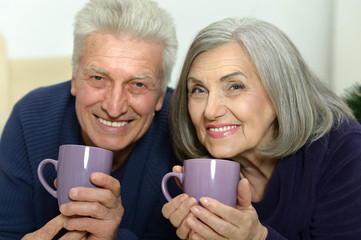 Portrait of an aged couple