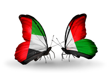 Two butterflies with flags UAE and Madagascar