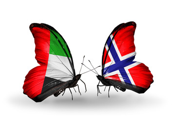 Two butterflies with flags  UAE and Norway