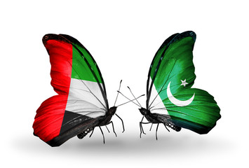 Two butterflies with flags UAE and Pakistan