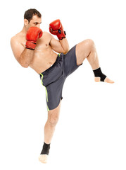 Muay thai trainer executing a kick