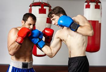 Kickbox sparring