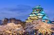 Leinwanddruck Bild - Osaka Castle in the Spring
