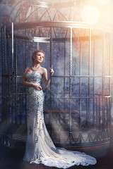 beautiful woman in elegant long dress standing near the cage