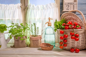 Sunny kitchen full of vegetables and herbs