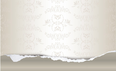 Torn paper with decoration background, illustration