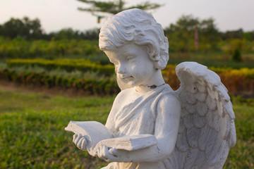 little cupid angel read a book in a garden