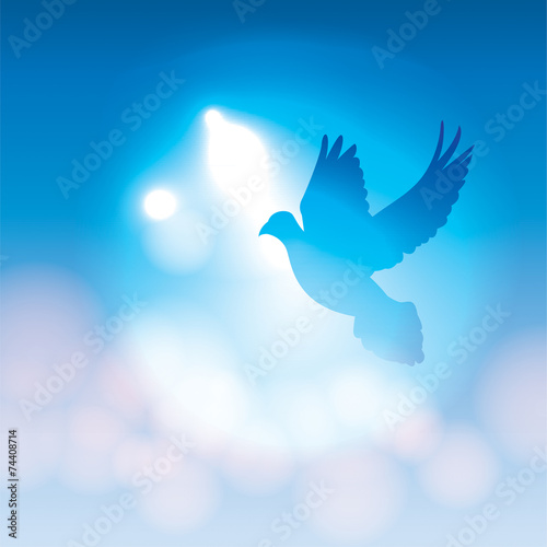 Illustrated Dove Silhouette and Soft Bokeh Lights - 74408714