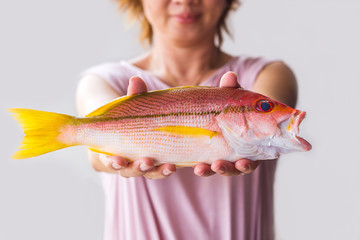 Young woman holding fresh red snapper fish.