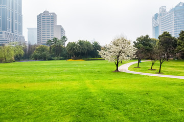 city green lawn