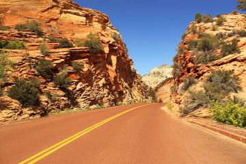Scenic road in Zion National Park, USA