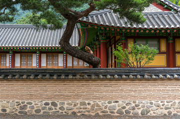 Traditional Buddhist temple wall and rooftop.