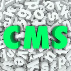 CMS Content Management System 3d Letters Word Acronym