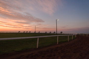 Race Horses Riders Training Dawn