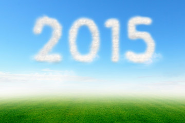 Cloud in blue sky over meadow with a shaped of number 2015