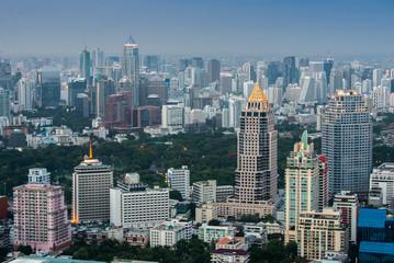 Bangkok city day view with garden