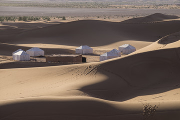 Desert Camp Sahara Morocco