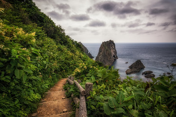 Shakotan coast with stairs leading up to the sea under overcast.