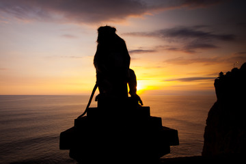 Silhouette monkeys at Uluwatu temple, Bali Indonesia.